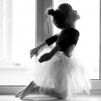танец на окне :: Ольга Радкевич