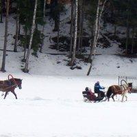 Катание на лошадях :: Агриппина
