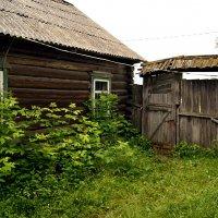 На заброшенном дворе :: Игорь Сикорский