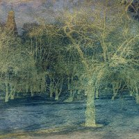 Синие крестики - тени деревьев; крестится снег, уходя в землю в марте :: Ирина Данилова