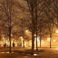 Золотой туман :: Вера Моисеева