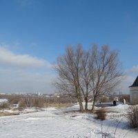 Пейзаж у стен монастыря :: Светлана Лысенко
