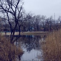 Самара :: Ксения Довгопол
