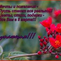 С наступающим!!! :: Elena Izotova