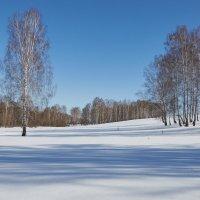 Зима в марте :: Николай Мальцев