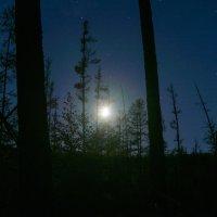 Лунная ночь :: Александр Хаецкий