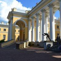 Колонны Александровского дворца :: Ольга