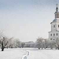 Свенский монастырь. :: Игорь Кожухов