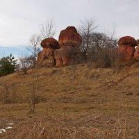 красные каменные грибы :: Игорь Kуленко