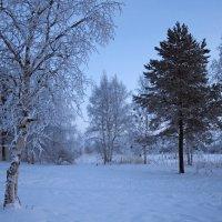 Северодвинск. Недавно была зима. Закатное марево :: Владимир Шибинский
