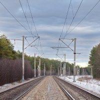 Железная дорога из Питера на восток... :: olgaborisova55 Борисова Ольга