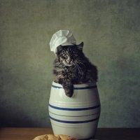 Горе- пекарь :: Ирина Приходько