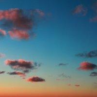 Краски неба не бывают одинаковы... :: Zhanna Kushnareva