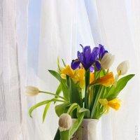С 8 марта! :: Анастасия Белякова