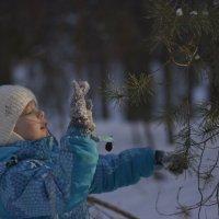 зимний лес :: Алена Карташова