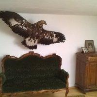 Одна из комнат в доме М.Цветаевой :: Мила