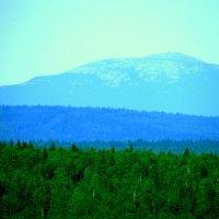 Голубые горы :: petyxov петухов