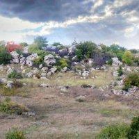 Харонов камень :: Андрей Дворкин