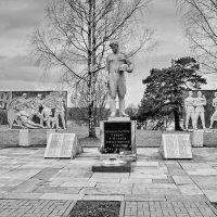Деревня  Вязье.  Памятник. :: Валера39 Василевский.