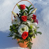 Весна пришла! :: Вера Андреева
