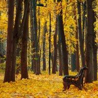 Осенний парк :: Михаил Танин