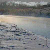Туманный декабрь. :: Николай Масляев
