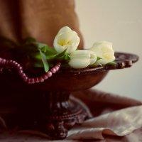 Нежное дыхание весны :: Вера Шамраева