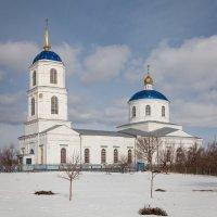 Село Орлово. Богоявленский храм :: Алексей Шаповалов Стерх