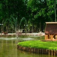 Парковый пруд :: Татьяна Кретова