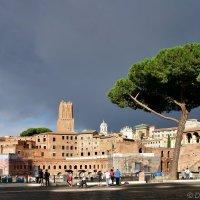 Форум Траяна в Риме :: Денис Кораблёв