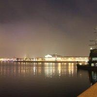 Как пасмурно сверкает вечерняя Нева! :: Наталья Герасимова
