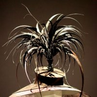 ЧУДНЫЕ шляпки? :: Ирина Фирсова