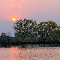 розовый закат :: Galina