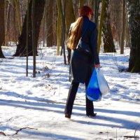 Рыжий лучик :: Svetlana27