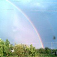 Необычная и очень красивая радуга. :: Владимир Ростовский