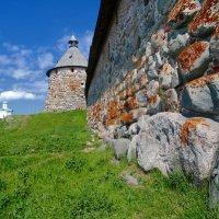 Корожная башня :: Владимир Клюев