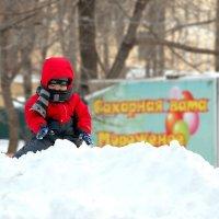 Сколько снега!!! :: Нина Борисова