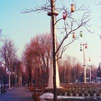 Дорожки, или Коммуникативно-архитектурная перспектива ) :: Ирина Сивовол