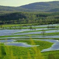 весна Юрюзань вышла из берегов :: petyxov петухов