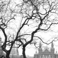 площадь Москвы :: Ksenia Sun