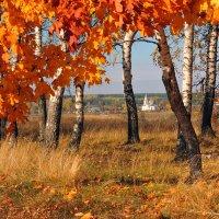 Осень в Кривополянье :: Сергей