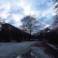 IMG_2998 - Не вчерашний вечер :: Андрей Лукьянов
