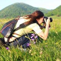 Фотоохота :: Vladimir 070549
