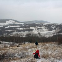 Карпаты ..снежно :: Роман Мамчук