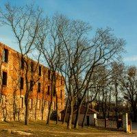 Стена замка :: Игорь Вишняков
