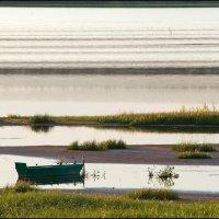 На реке ль, на озере... :: Михаил Розенберг