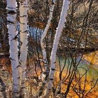 Голубым,золотистым и палевым... :: Лесо-Вед (Баранов)
