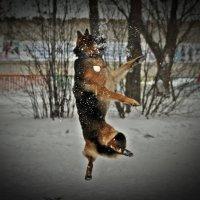 Юнита для Сибирских Афин :: Дарья Буренок