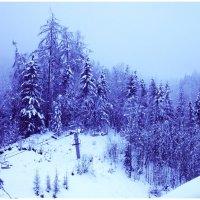 Chamonix 2015 :: Дмитрий Ланковский