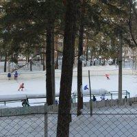 Хоккейная площадка. Тренировка. :: Олег Афанасьевич Сергеев